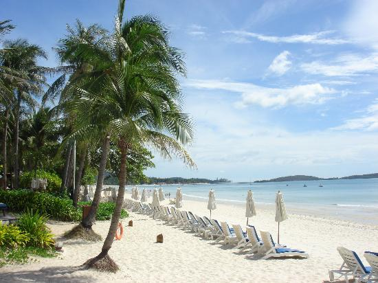 chaweng beach at central - Koh Samui resorts: Best for all types of vacation purposes