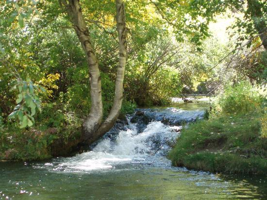 Spearfish attractions
