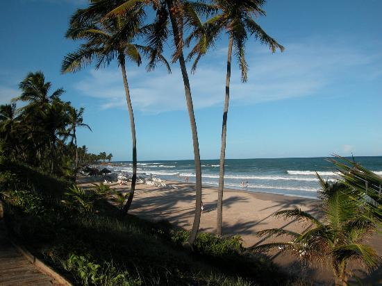 Costa Do Sauipe, BA: Marriott Beach High Tide
