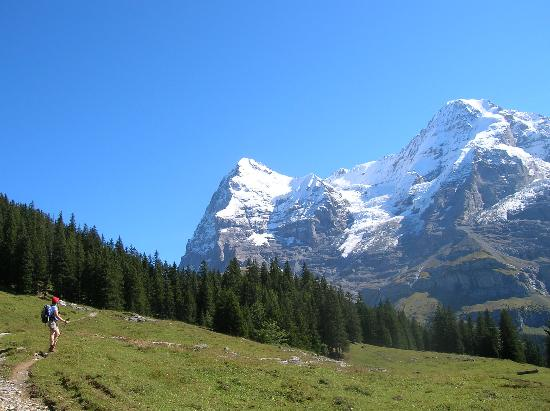 Alpi svizzere, Svizzera: The Eiger, Monch and Junfrau mountains tower over the Wengernalp to Wengen trail.