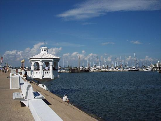 Corpus Christi Marina