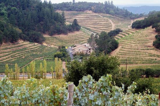 Napa, Kalifornien: Pine Ridge Winery