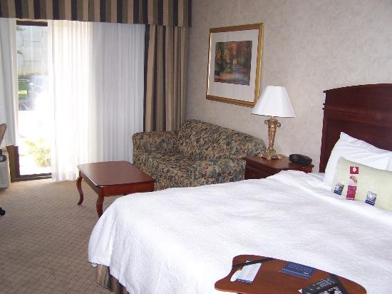 Hampton Inn Springfield: King Study