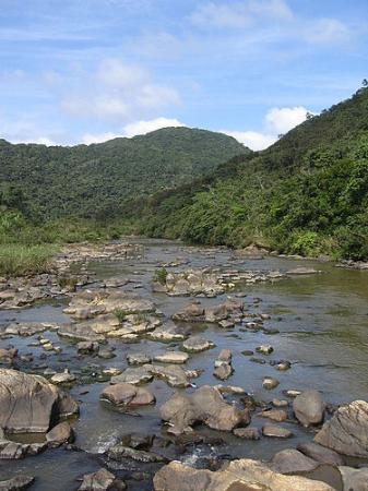 Belice: River nearby Caracol