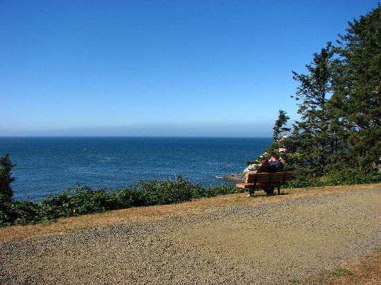 Yachats, : Taking in the view