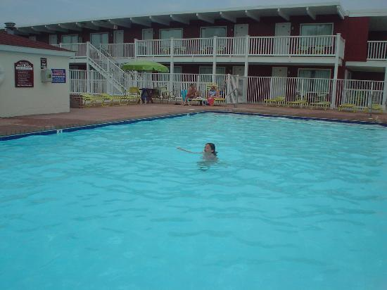 Ocean Mecca Motel: The Pool