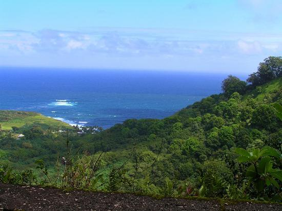 Views along the Hana highway