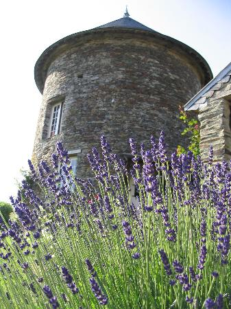 Normandie, France : B&B in Normandy
