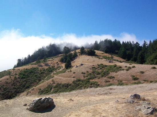 Mill Valley, Калифорния: Dipsea trail next to the western entrance to to Muir Woods Monument