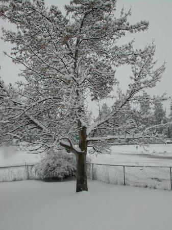 Missoula, Монтана: One snowy day in May