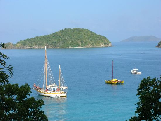 Maho Bay Camps: daytime view from our deck