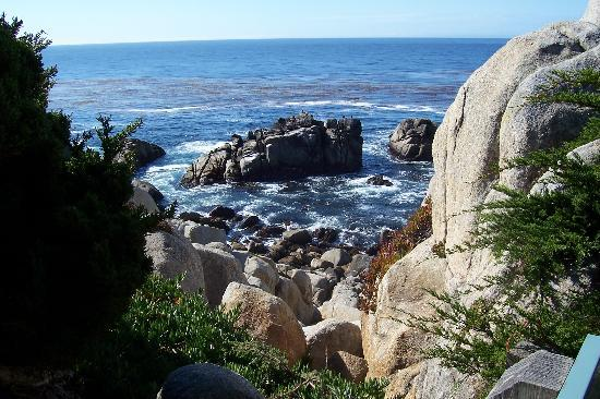 Pacific Grove, Californie : View from The 17 Mile Drive