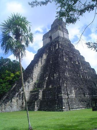 Tikal National Park, Guatemala : Tikal Ruins2 