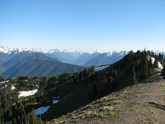 Hotels Near Hurricane Ridge