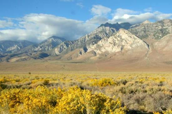 Eastern Sierra's near Bishop