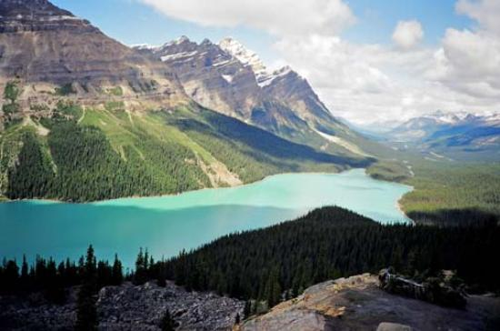 Parc national de Jasper, Canada : Peyto Lake on Icefields Parkway