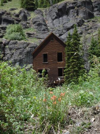 Old mining cabin near Yankee Boy Basin - Picture of Ouray ...