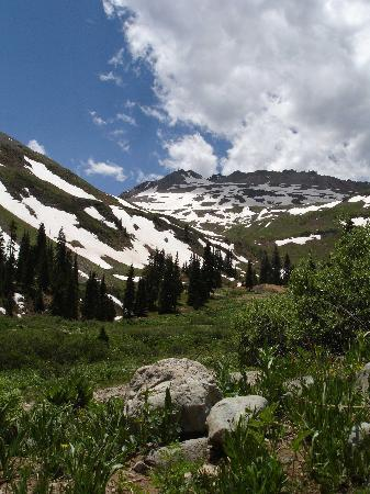 Ouray, CO: Majestic mountain along road to Yankee Boy Basin