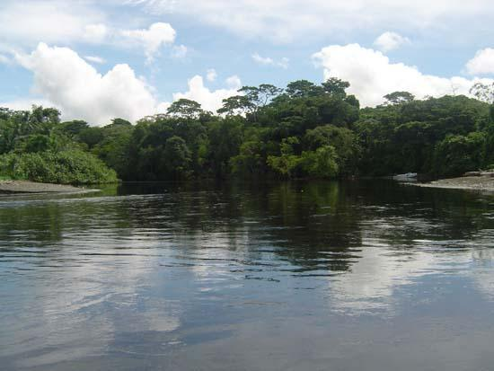 Corcovado National Park Resmi