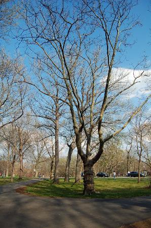 North Bergen, NJ: Springtime @ Hudson Park
