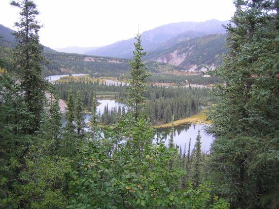 Denali National Park and Preserve, อลาสกา: Scenery