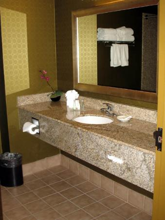 Comfort Suites DFW N/Grapevine: Nice clean large bathroom