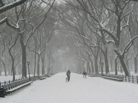 Winter in NYC?