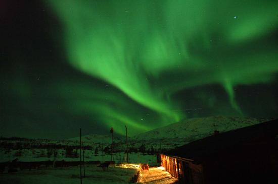Rica Ishavshotel: Northern lights at wilderness centre