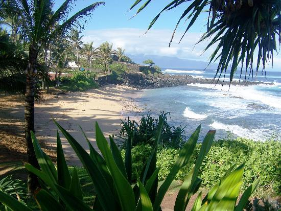 Paia Hotels