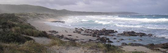 Маргарет-Ривер, Австралия: Beautiful Windswept Boodjidup Beach at Margaret River, the closest beach to...