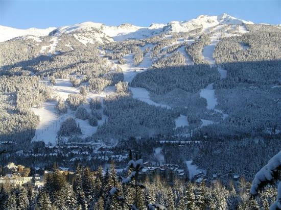 Whistler, Canada: Looking at Blackcomb Mountain from Blueberry Hill