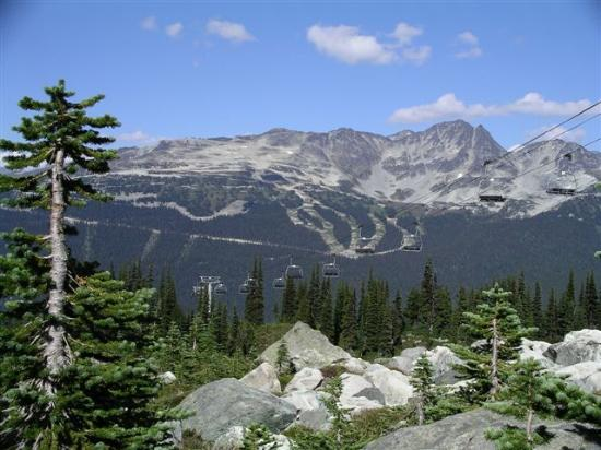 , : Summertime, hiking Harmony Bowl on Whistler looking towards 7th Heaven on Blackcomb