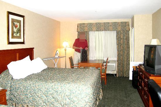 BEST WESTERN PLUS Media Center Inn & Suites: Room 217.