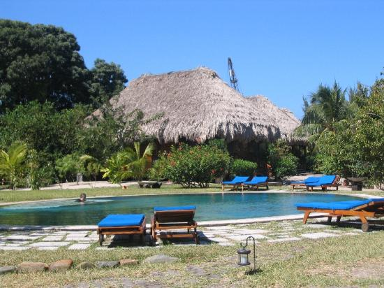 Turtle Inn: The swimming pool and restaurant (picture taken from the beach bar)