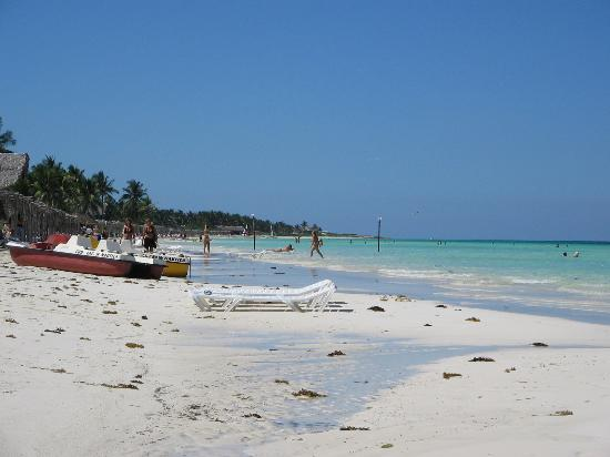 Cayo Coco, Cuba: Seaweed on the Beach