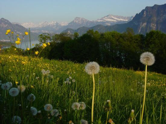 Luzern, Schweiz: On a hike near Lucerne