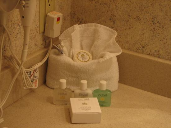 Horseshoe Southern Indiana Casino Hotel: Bathroom amenities