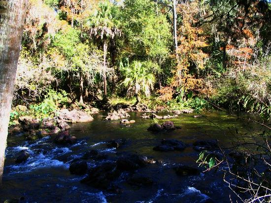 Hillsborough River State Park Thonotosassa Fl Hours Address Body Of Water Reviews