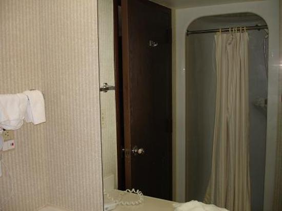 Holiday Inn Dubuque: Shower is small but nice hand held shower head.