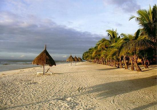 Panglao Island, Filippinerne: The beach