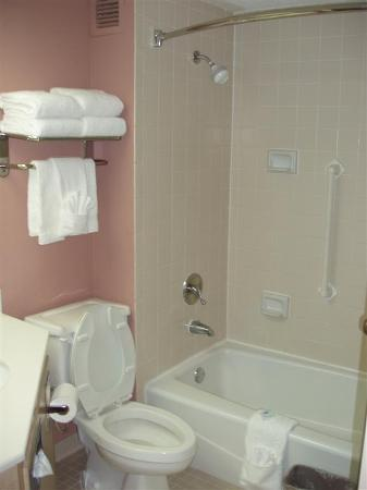 Hampton Inn Baton Rouge I-10 & College Dr.: Bathroom