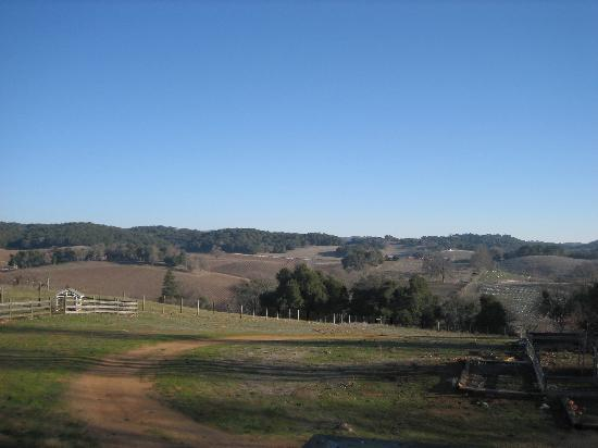 Paso Robles Photo