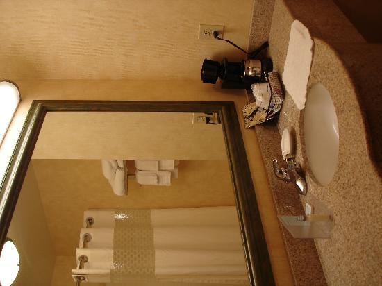 Hampton Inn & Suites Dothan: Spacious bathroom