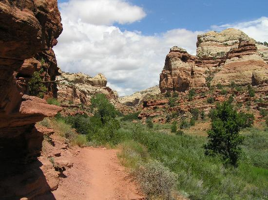 Escalante attractions