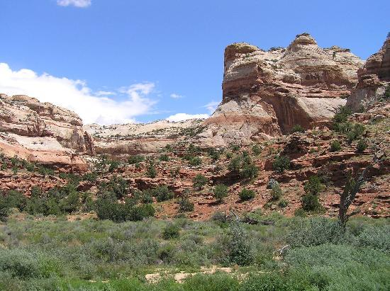Escalante, UT: Calf Creek Falls canyon