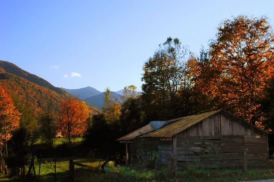 Barn in Maggie Valley in autumn