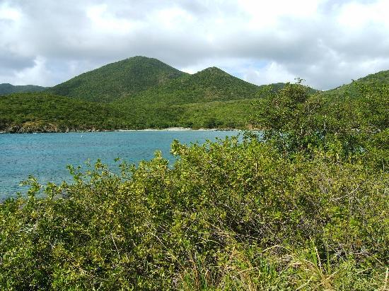 St. John: Looking back at Salt Pond from beginning of trail