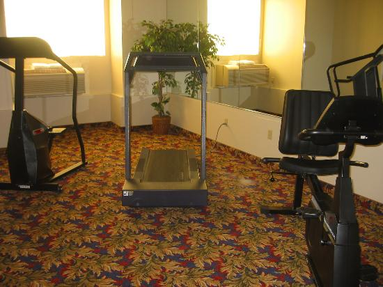 Comfort Inn & Suites Salinas: Run Forest Run...