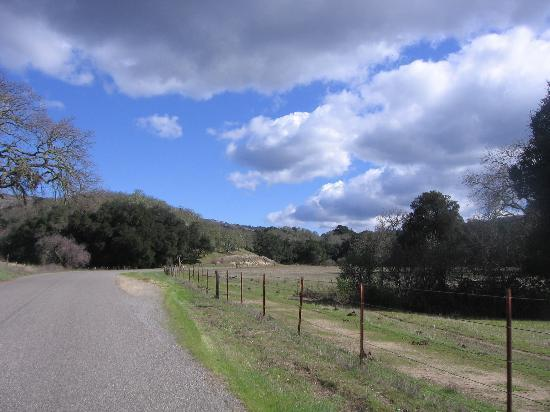 beautiful drive out in Carmel Valley