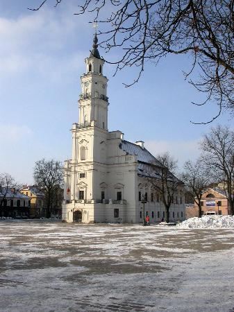 Kaunas, : Town Hall Kaunas